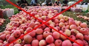 Hoa quả nhiễm độc từ Trung Quốc nhập vào Việt Nam. Ảnh minh họa google