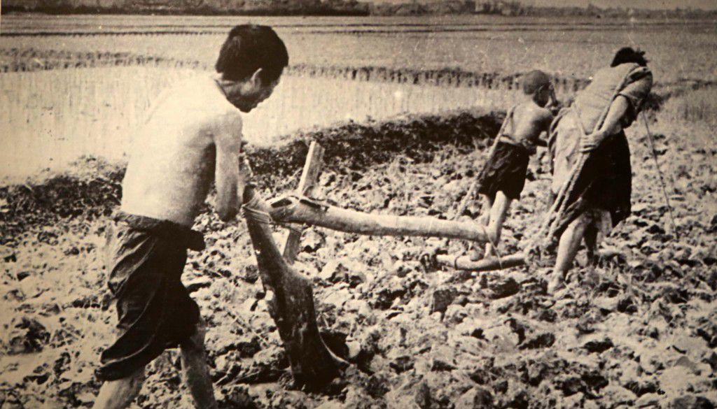 Canh kho cuc cua nguoi nong dan truoc Cach mang Thang Tam 1945