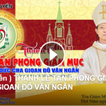 do van ngan